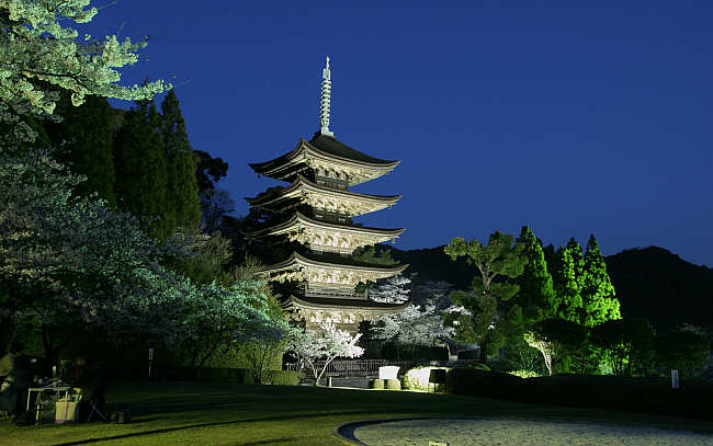 http://www.momoji.net/3yakei/h16.300630_RJ.jpg